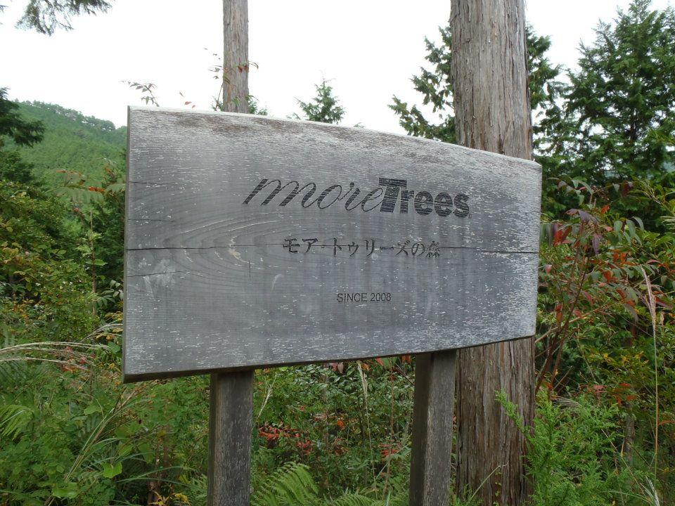 (c)moretrees
